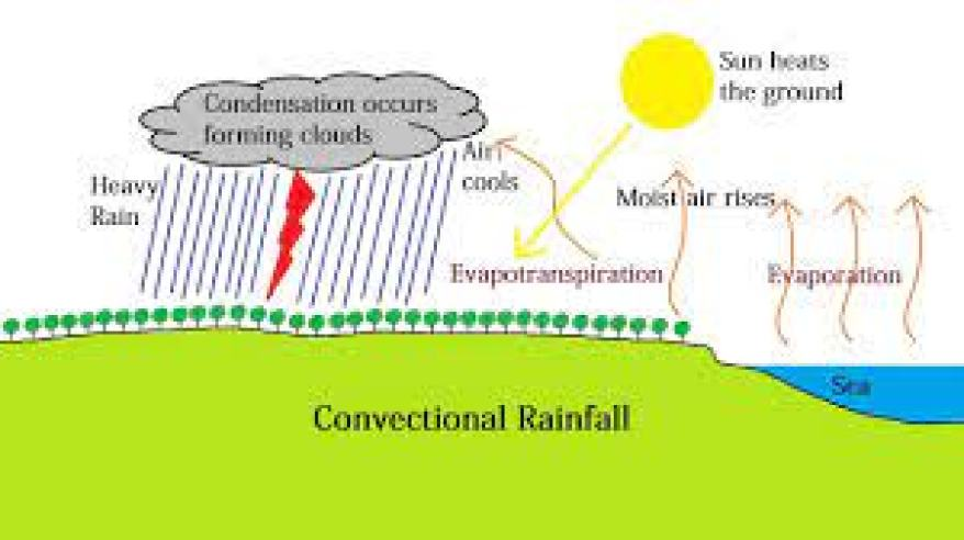 The region receives convectional rainfall