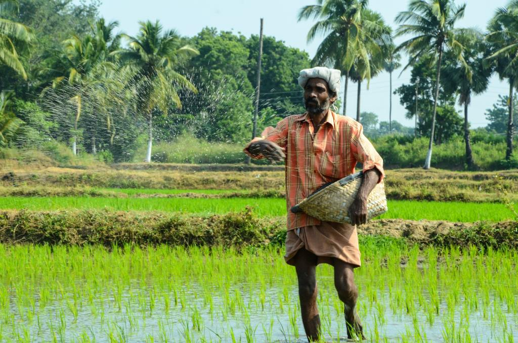 Characteristics of small-scale agriculture at subsistence level