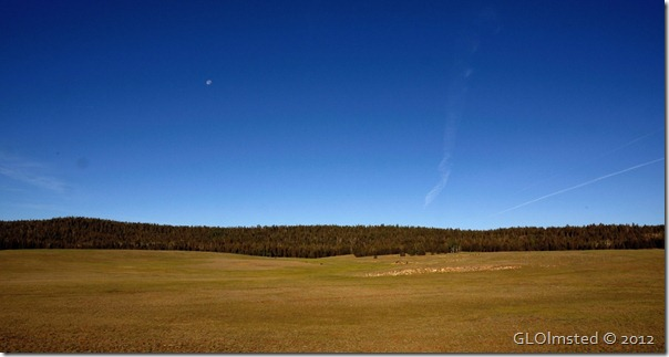01 Moon over meadow Kaibab NF AZ (1024x545)