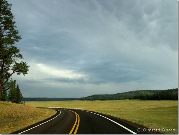 11er Meadows under stormy sky SR67 S Kaibab NF AZ (1024x768)