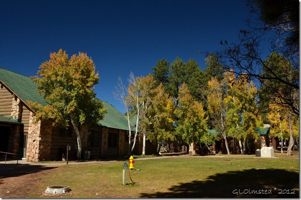 03 Fall colors by Grand Lodge NR GRCA NP AZ (1024x678)