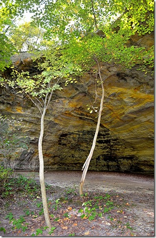 07 Council overhang from Kaskaskia & Ottawa Canyons trail Starve Rock State Park IL pano (669x1024)