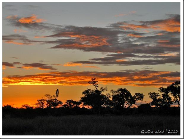 Sunset Kruger NP