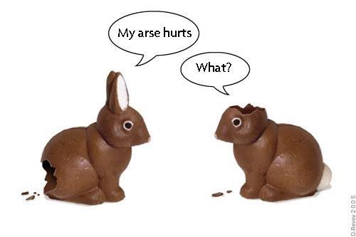 partially eaten chocolate bunnies