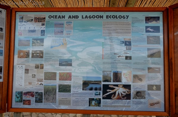 Sign for ocean & lagoon ecology of West Coast National Park South Africa