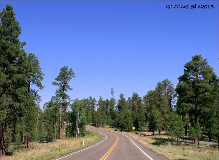 Jacob Lake watch tower SR67 Kaibab National Forest Arizona