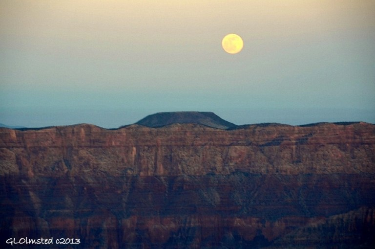 Full moon rising over Cedar Mountain from Cape Royal North Rim Grand Canyon National Park Arizona