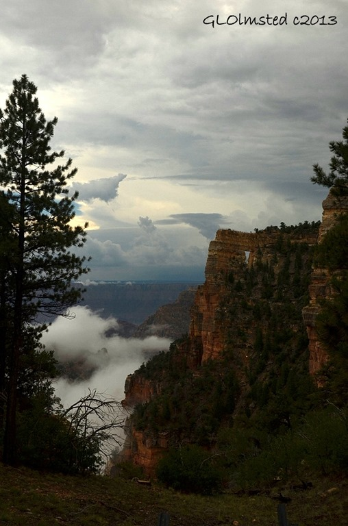 Monsoon clouds & Angels Window North Rim Grand Canyon National Park Arizona