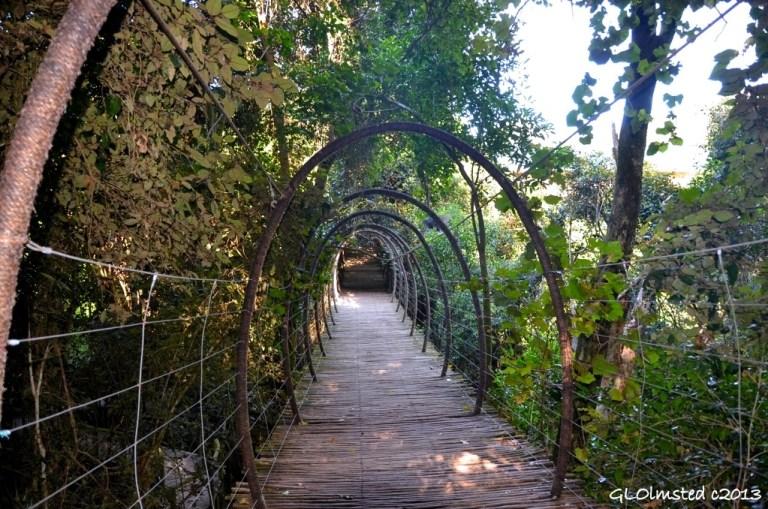 Suspension bridge at Birds of Eden Plattenberg Bay South Africa