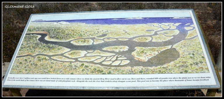 Illustration of 5 million year ago landscape sign Fossil Park Langebaan South Africa