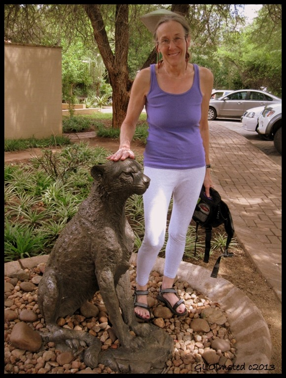 Gaelyn petting Cheeta statue Satari camp Kruger National Park Mpumalanga South Africa