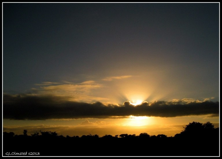 Sunrise Kruger National Park Mpumalanga South Africa