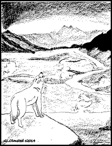 Drawing of wolf howling over canyon