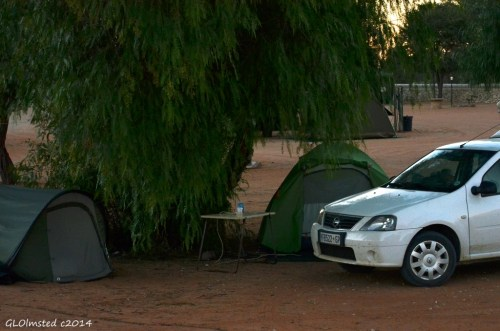 Campsite Kgalagadi Transfrontier Park South Africa