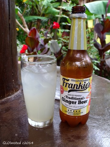 Frankie's Ginger Beer Mac Banana Port Edward South Africa