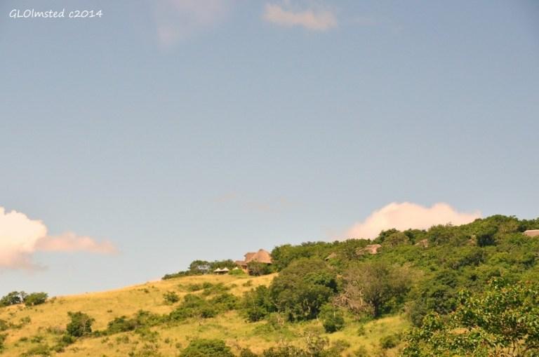 Hilltop Resort Hluhluwe iMfolozi National Park South Africa