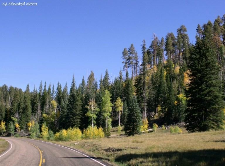 Fall colors North Rim Grand Canyon National Park Arizona