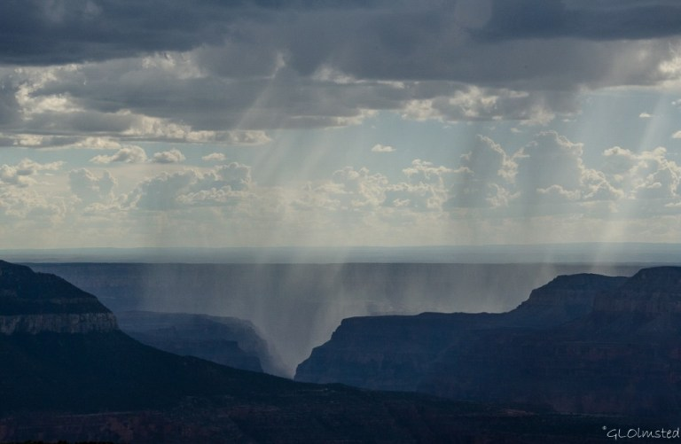 Rain in the canyon from Parissawampitts Point Kaibab National Forest Arizona