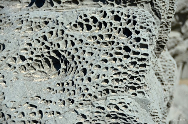 Honeycomb erosion on beach rock Bandon Oregon