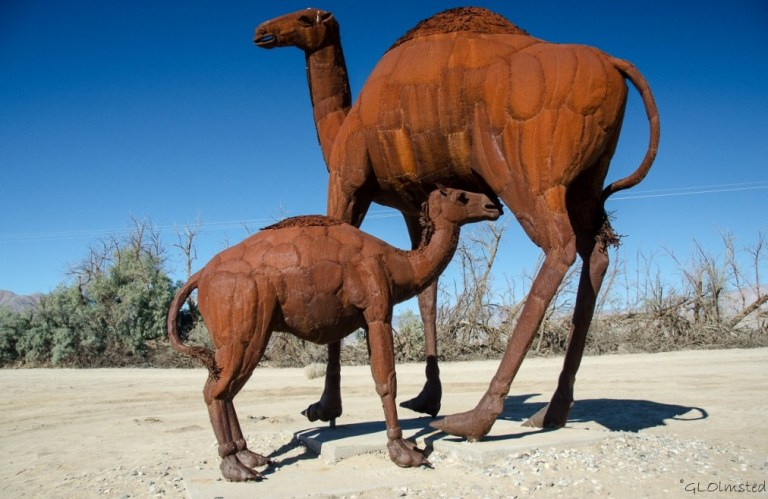 Camelops metal sculpture by Ricardo Breceda Galleta Meadows Borrego Springs California