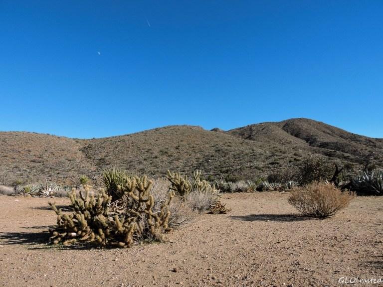 Area around Box Canyon historic sign S2 Anza-Borrego Desert State Park California