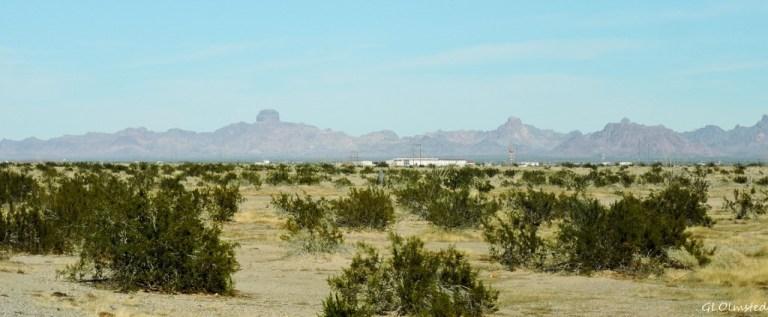 Castle Dome Peak from US95 Arizona