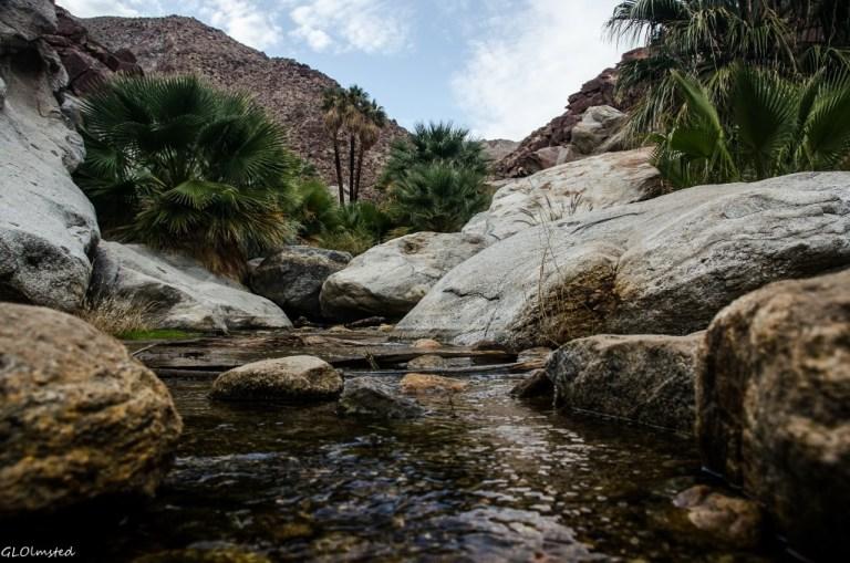 Palm Canyon Anza-Borrego Desert State Park California