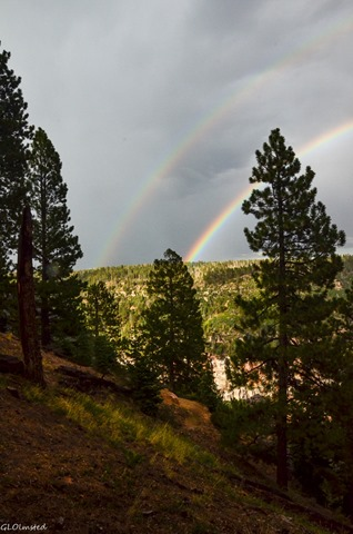 Rainbow over Roaring Springs Canyon North Rim Grand Canyon National Park Arizona