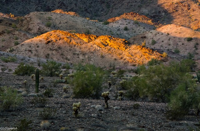 First light on desert Dome Rock Quartzsite Arizona