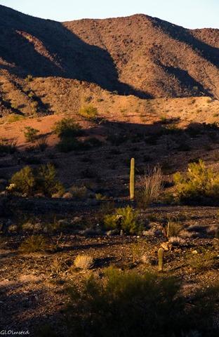 Early light on desert Dome Rock Quartzsite Arizona