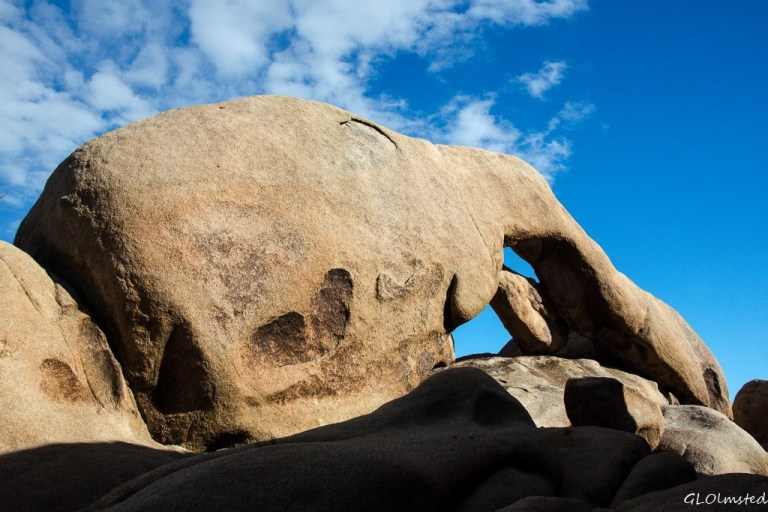 Arch Rock White Tank campground Joshua Tree National Park California
