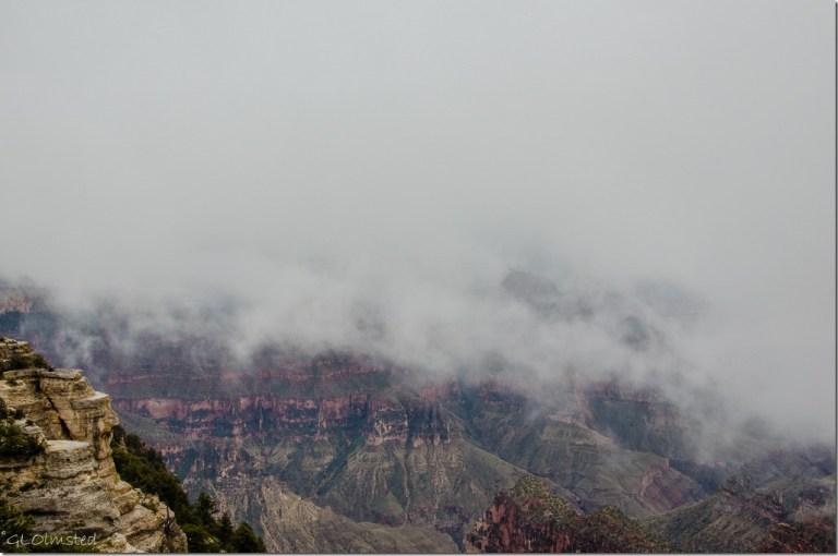 Canyon & cloud North Rim Grand Canyon National Park Arizona