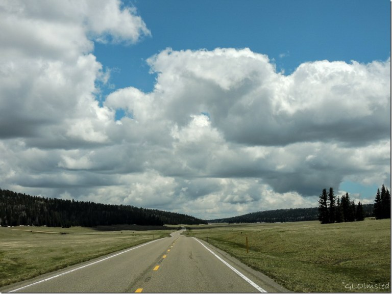Clouds above green meadows Kaibab National Forest Arizona