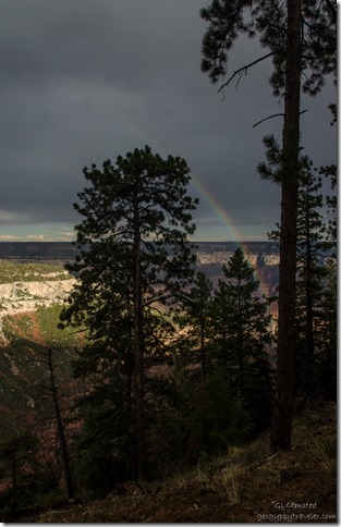 Rainbow in Roaring Springs Canyon North Rim Grand Canyon National Park Arizona