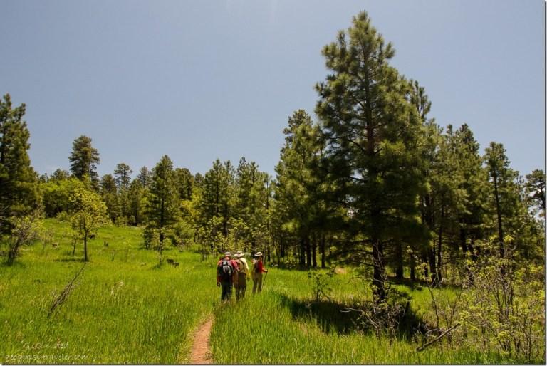 Bill, Jim & Gayle Rainbow Rim Trail Kaibab National Forest Arizona