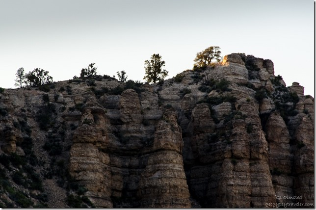 Last light on cliff top Snake Gulch trailhead Kaibab National Forest Arizona