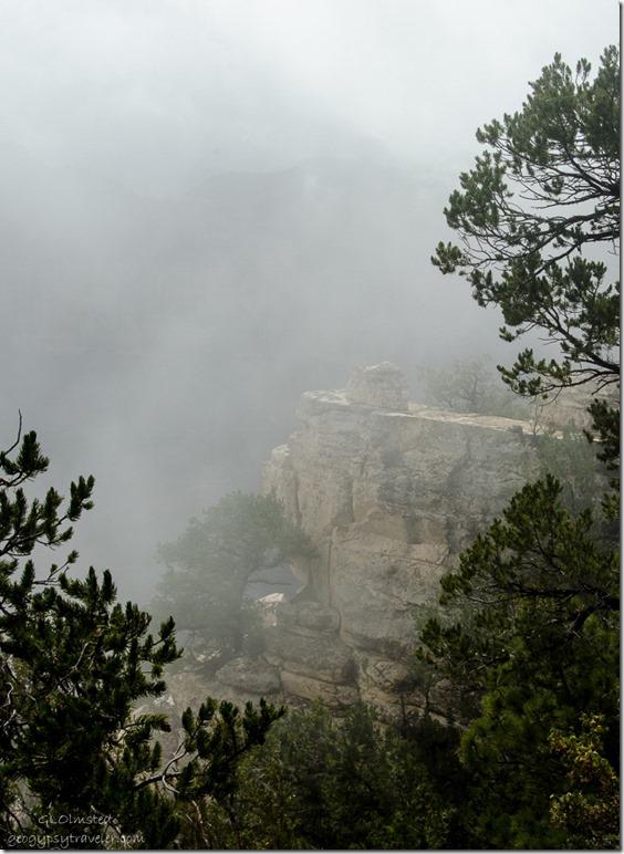 Foggy canyon from Transept trail North Rim Grand Canyon National Park Arizona
