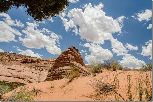 Dunes & sandstone formation Upper Buckskin Gulch Paria Canyon/Vermilion Cliffs Wilderness area Utah