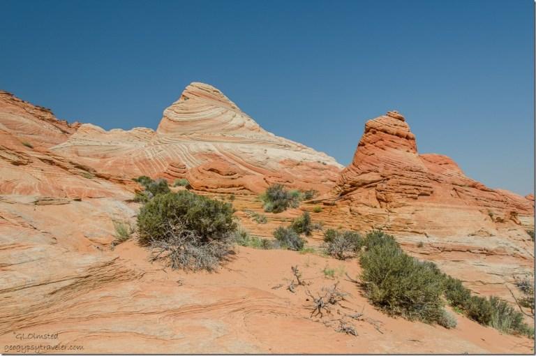 Sandstone Coyote Buttes trail Paria Canyon-Vermilion Cliffs Wilderness Arizona