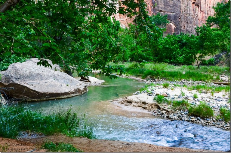 Virgin River walk trail Zion National Park Utah