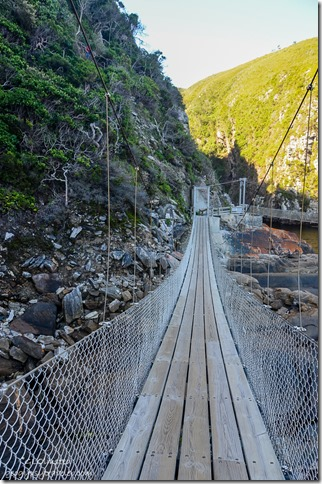The bridge Suspension Bridge trail at Storms River Mouth Tsitsikamma National Park South Africa