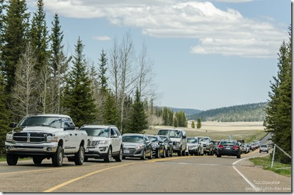 Line of cars at entrance station North Rim Grand Canyon National Park Arizona