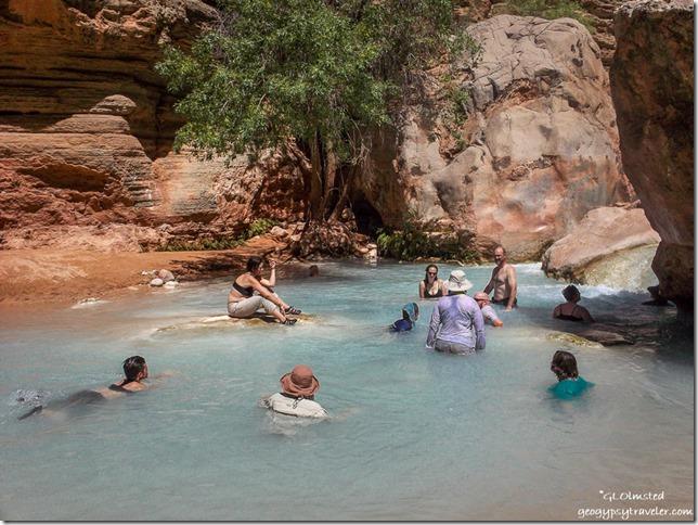 Swimming Havasu Creek Grand Canyon Arizona