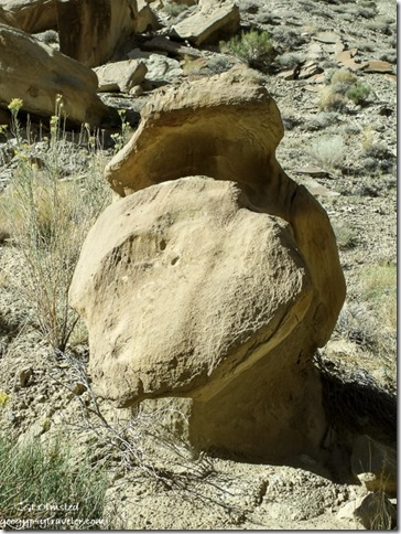Unusual eroded boulder in side canyon of Cottonwood Canyon Grand Staircase-Escalante National Monument Utah
