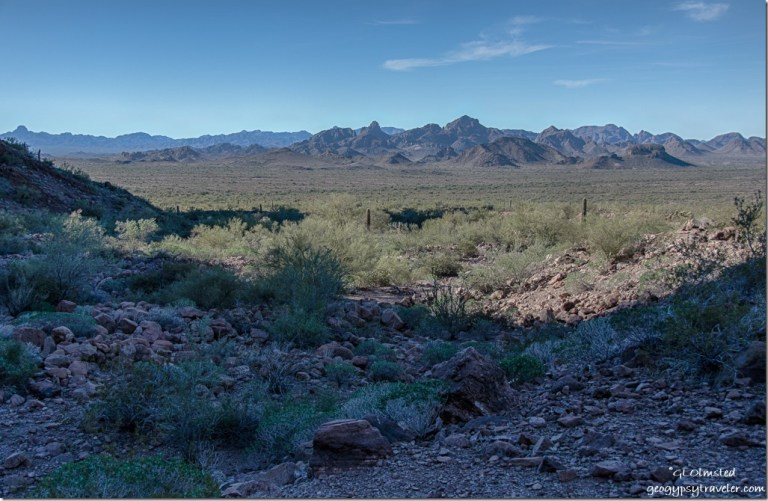 View West Dome Rock Mountains from mouth of Palm Canyon trail Kofa National Wildlife Refuge Arizona