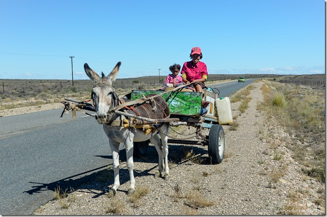 Donkey cart N12 North South Africa
