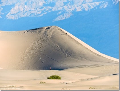 Mesquite Flat sand dunes Death Valley National Park California