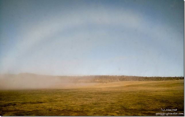 fog bow meadows Kaibab National Forest Arizona