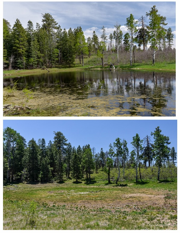 Greenland Lake 2017 & 2014 comparison North Rim Grand Canyon National Park Arizona