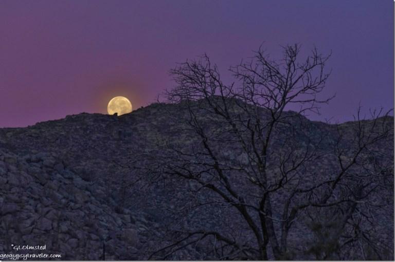 Moon set Yarnell Arizona